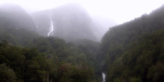 The Newland Stream