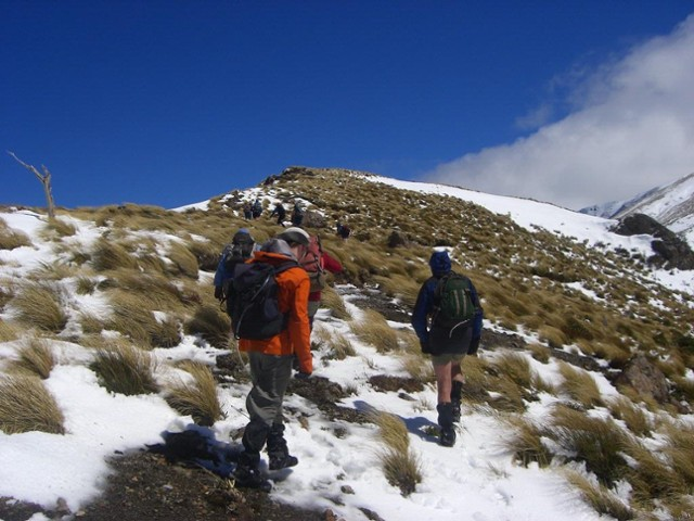 Trampers on route to Longview Hut