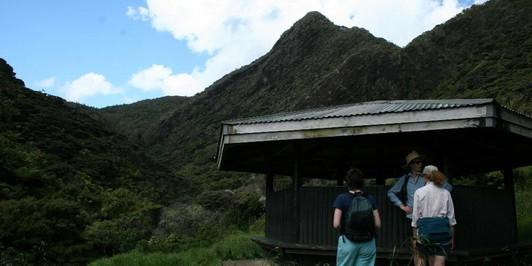 Les Ward Shelter, Pararaha Campsite