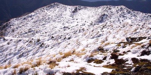 summit of Mt Holdsworth