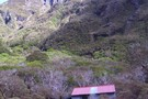 Otehake NZFS track up to Big Tops and down to Koropuku Hut