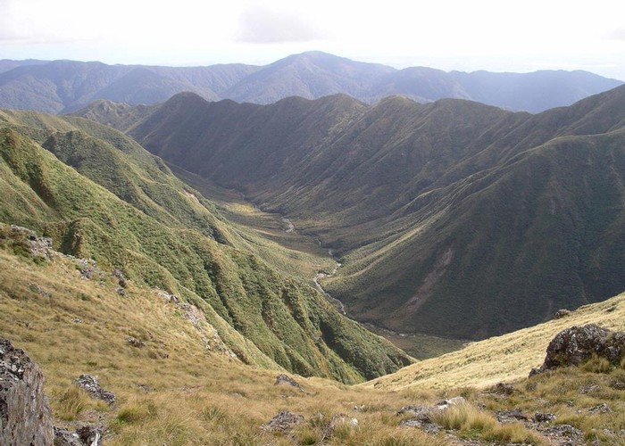 Park Valley - the Tararuas only glaciated valley
