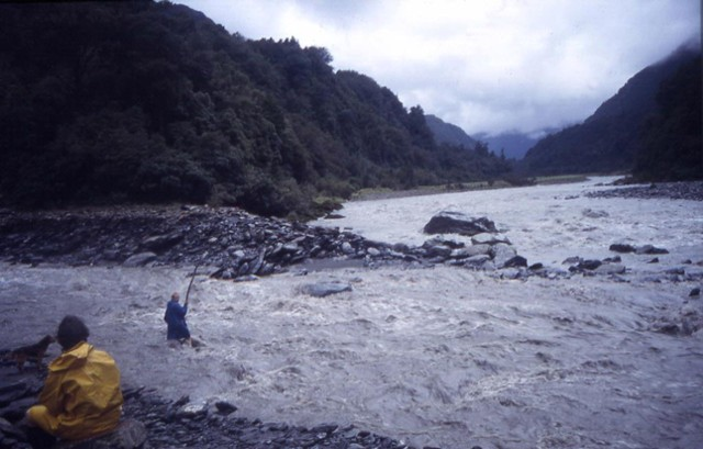 Wanganui River, Westland