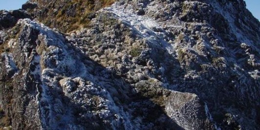 Mt. Hikurangi Summit Ridge