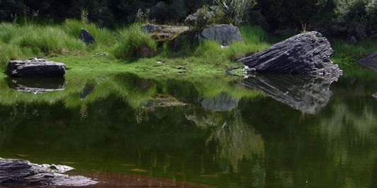 Disappearing Tarn