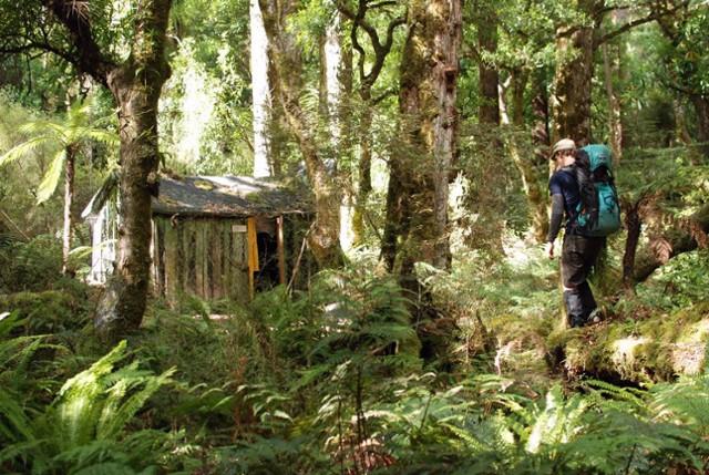 Tui Flat Hut