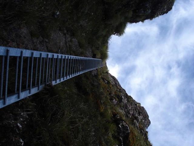 Steel ladder Tararua Peaks Feb 2010