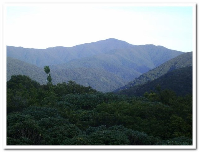 Ruamahanga valley looking south from Herepai.