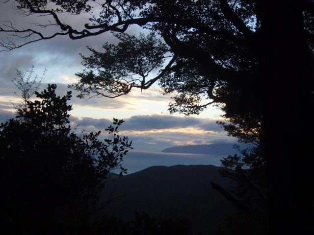 Pararaki / Washpool ridgeline