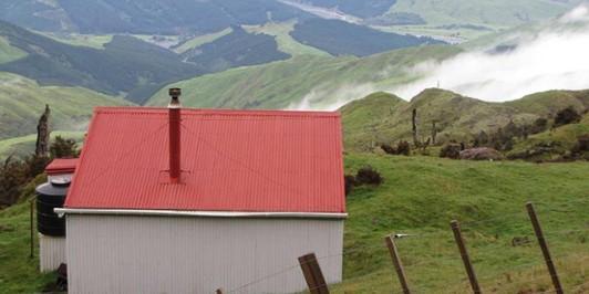 Hikurangi Hut and View