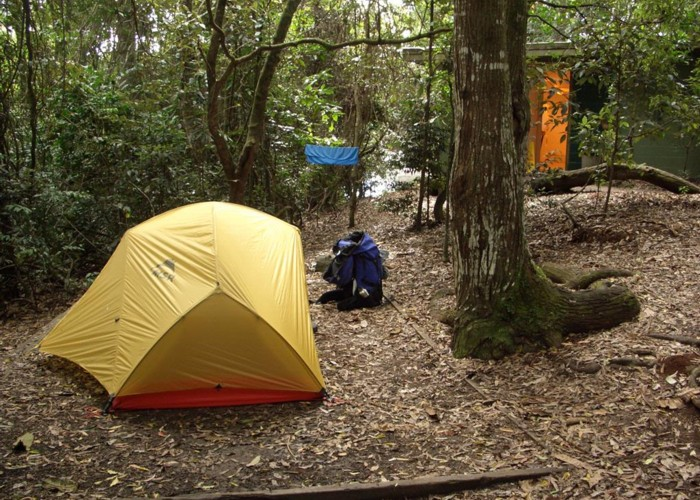 Camp Site at Binna Burra, Lamington National Park