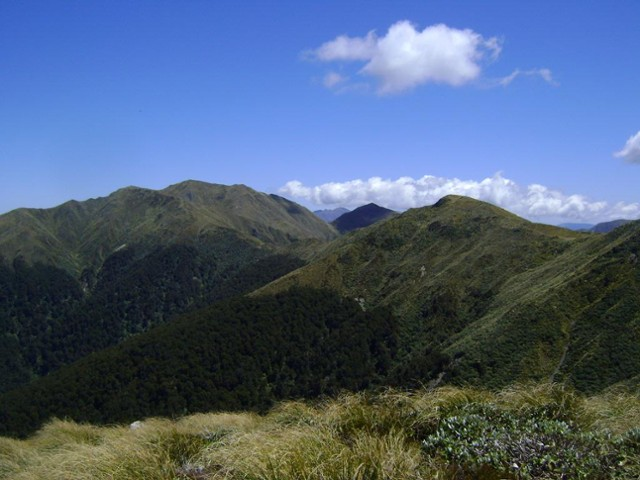 Towards Mt Holdsworth and beyond.