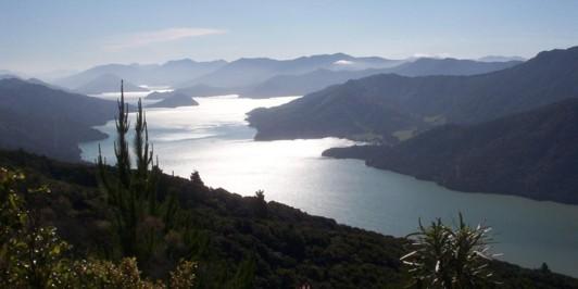 Kenepuru Sound.