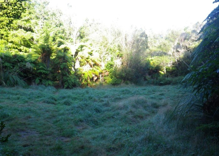 Waitengaue Hut site