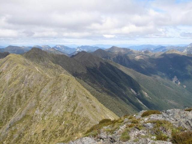 Matiri Wangapeka ridge from Nuggett Knob